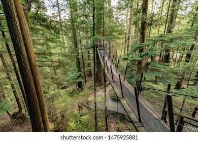 A beautiful suspension bridge in the forest, crossing over the jungle. Vancouver, BC, Canada