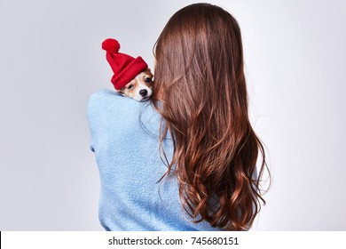 Beautiful SWEET brunette long hair woman wear blue color sweater with snowflake pretty face makeup celebrate new year eve party merry Christmas fun holiday winter hold hand small dog in Santa red hat