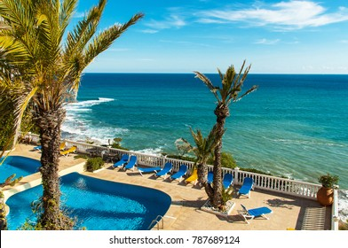 Beautiful swimming pool with palm tree in winter, november,15,2017. Torrevieja,Spain