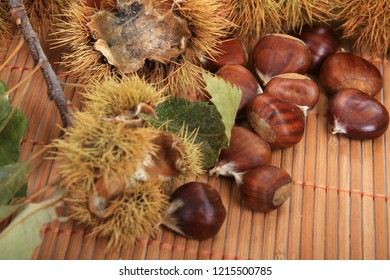 beautiful and tasty chestnuts