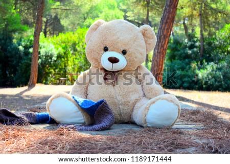 Beautiful Teddy Bear Wallpaper Stock Photo Edit Now 1189171444