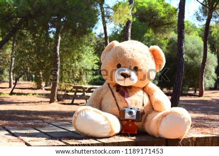Beautiful Teddy Bear Wallpaper Stock Photo Edit Now 1189171453