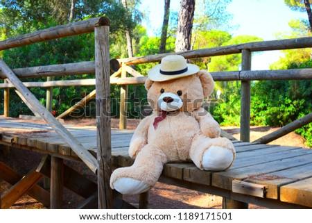 Beautiful Teddy Bear Wallpaper Stock Photo Edit Now 1189171501