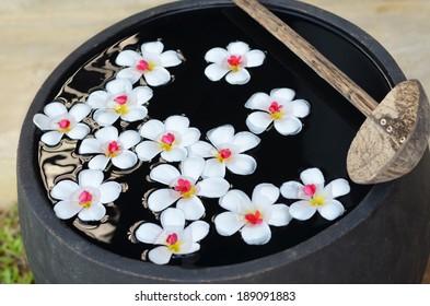 Beautiful temple-tree flowers floating on water in huge bowl