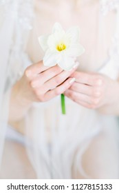 Beautiful and tender flower in hands of the bride.  Narcissus in woman hands. Hands with a flower