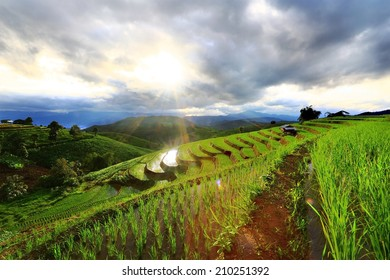 Beautiful terrace rice field with small house in north Thailand