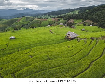 Beautiful terraced rice fields in Chiang Mai, Thailand, background