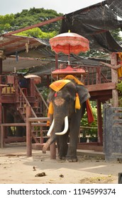 Beautiful Thai Elephant with Ornaments