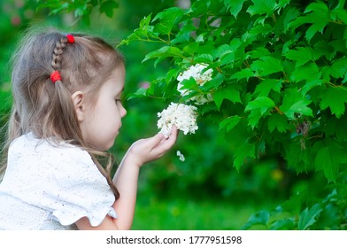 beautiful three year old girl examines a beautiful flower in the park on a clear summer day
