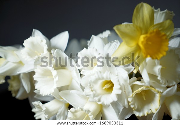 beautiful, tied daffodils are in a flower vase on the table