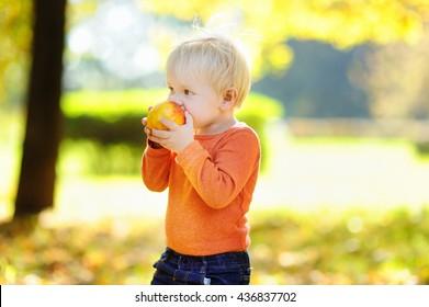 Beautiful toddler boy eating fresh bio peach outdoors