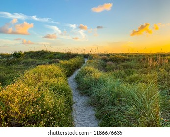 Beautiful trail to beach in Florida at sunset.