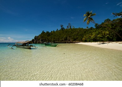 Beautiful tranquil island beach with coconut palm trees