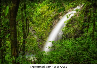 Beautiful tranquil and peaceful waterfall in Costa Rica, manuel antonio park, strong and green falls landscape surrounded by green trees