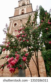 A beautiful tree with pink flowers and green leaves in front of a monastery building made of brick at Bodbe Monastery in Kakheti, Georgia