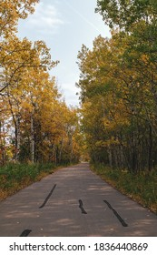 Beautiful tree-lined foot and bike path in autumn in Assiniboine Forest in Winnipeg, Manitoba, Canada