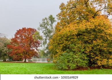A beautiful  trees and lake in autumn season at The Munster Park, Germany