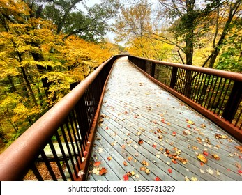 A beautiful trestle bridge winding through a colorful fall forest
