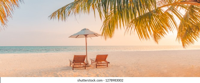 Beautiful tropical beach banner. Calm white sand and coco palms travel tourism wide panorama background concept. Amazing sunset beach landscape use for summer vacation or beach holiday.