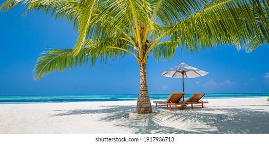 Beautiful tropical beach banner. White sand coco palms travel tourism wide panorama. Summer sea horizon, idyllic island nature scene. Amazing beach landscape. Luxury island resort vacation or holiday