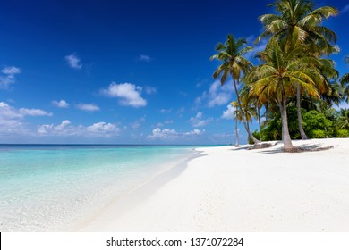 Beautiful, tropical beach with coconut palm trees, fine sand and turquoise waters