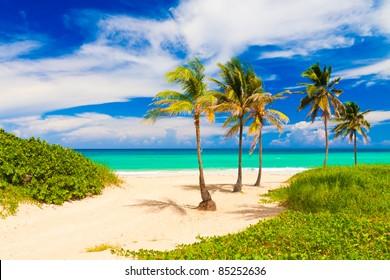 Beautiful tropical beach in Cuba