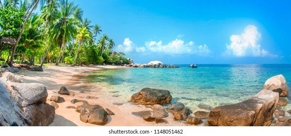 Beautiful tropical beach at exotic island with palm trees. Nature background. Koh Tao. Thailand