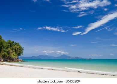 beautiful tropical beach with mangroves