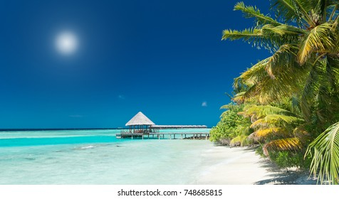 beautiful tropical beach panorama with palm trees and jetty in the distance