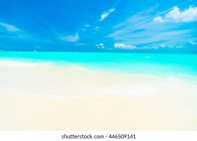 Beautiful tropical beach and sea in maldives island with coconut palm tree and blue sky background