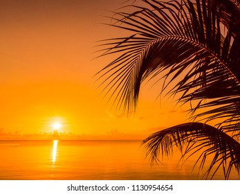 Beautiful tropical beach sea and ocean with coconut palm tree at sunrise time for travel and vacation