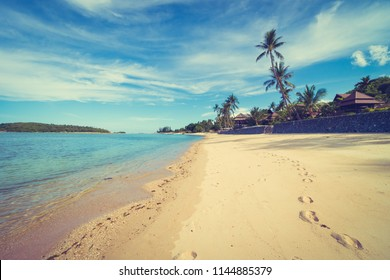 Beautiful tropical beach sea and sand with coconut palm tree on blue sky and white cloud for travel and vacation