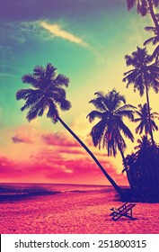 1000 Palm Tree Beach Sunset Stock Images Photos Vectors