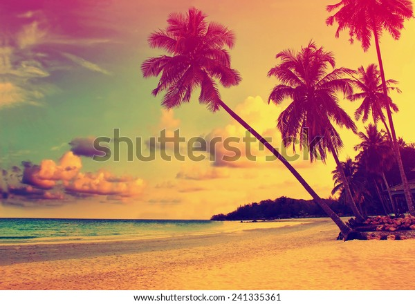 Beautiful tropical beach with silhouettes of palm trees at sunset