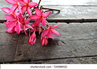 Beautiful tropical frangipani flower,plumeria flower  on wooden background.