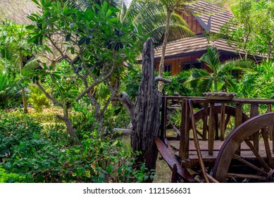 Beautiful tropical garden with green trees, small footpath, house. Thai style