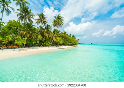 Beautiful tropical island with beach and coconut palm tree