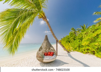 Beautiful tropical Maldives beach under cloudy sky with swings on coconut palm. Luxury vacation