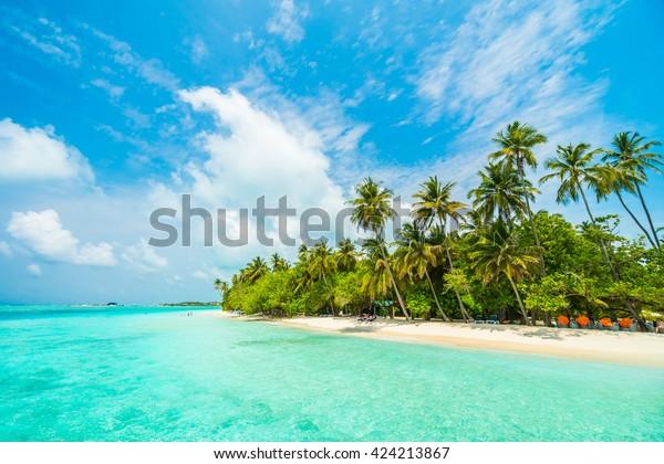 Belle île tropicale des Maldives avec plage, mer, et cocotier sur ciel bleu pour les vacances nature concept d'arrière-plan - Augmenter la couleur Traitement