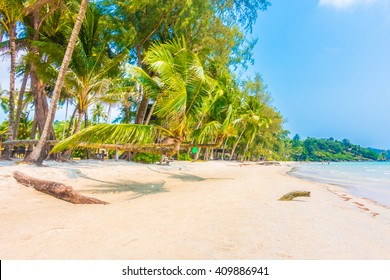 Beautiful tropical ocean or sea and sand beach on island with coconut palm tree - Boost up color Processing style