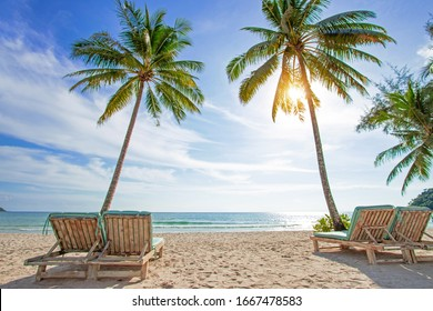 Beautiful tropical paradise white beach with sun beds under coconut palm trees on island. Beautiful beach and beautiful palm tree travel summer holiday concept.