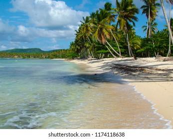 beautiful tropical seashore with palm trees, Samana, Dominican Republic