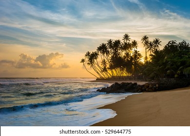 Beautiful tropical sunset with palm trees. Wijaya beach, Sri Lanka.