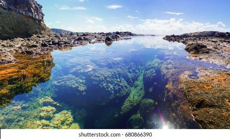 A beautiful tropical tidal pool on the island of Saipan.