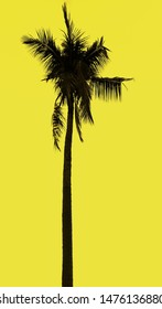 Beautiful Tropical Tree wallapaper with Yellow background