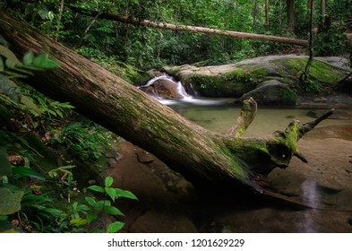 Beautiful tropical waterfall in lush surrounded by green forest.wet rock and moss.