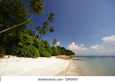 Beautiful Tropical White Beach With Palm Trees