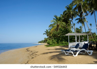Beautiful tropical white sandy beach with sun loungeres   in Las Terrenas,  Dominican Republic