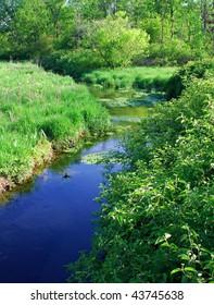 Beautiful trout stream