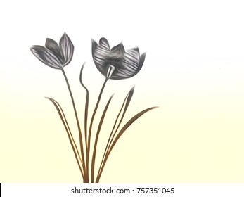 Line Drawing Grass : Beautiful tulip bouquet line drawing valentine stock illustration